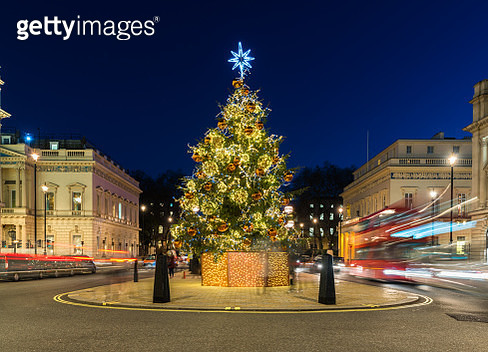 Christmas Tree and Red Double Decker Bus at Night, London, UK. - gettyimageskorea