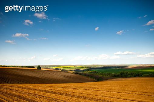 Plowed field in Dobrudzha region - gettyimageskorea