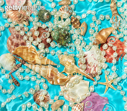 Underwater Shells and Pearls - gettyimageskorea