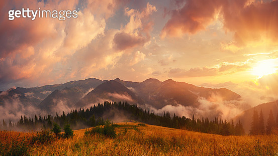 Foggy Morning Landscape - gettyimageskorea