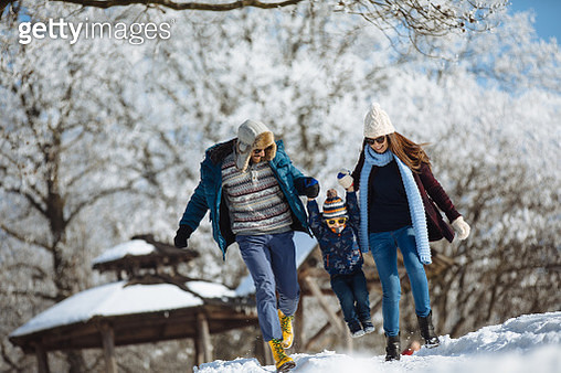 Winter day in the forest - gettyimageskorea
