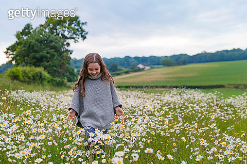 Young girl walking through field of daisies - gettyimageskorea