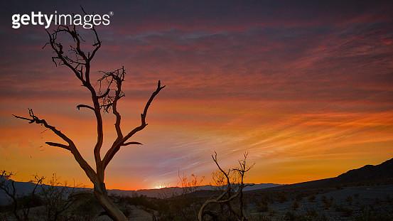 Death Valley - gettyimageskorea