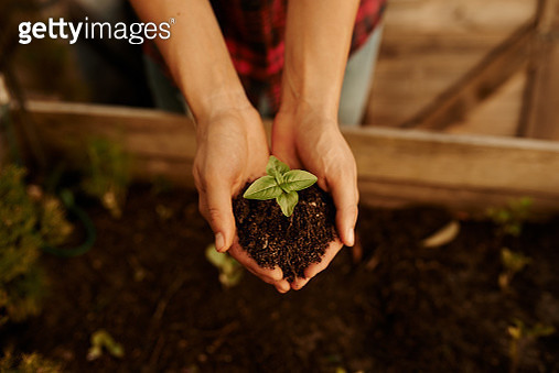 Growing a garden with her own two hands - gettyimageskorea