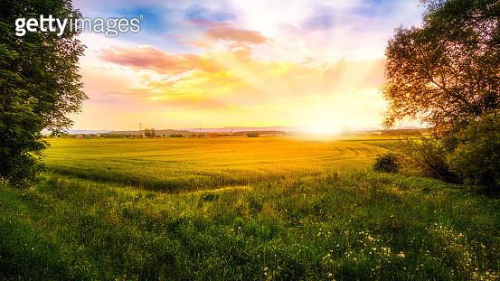 Landwirtschaftlich genutzte Flächen werden von der Morgensonne angestrahlt. - gettyimageskorea