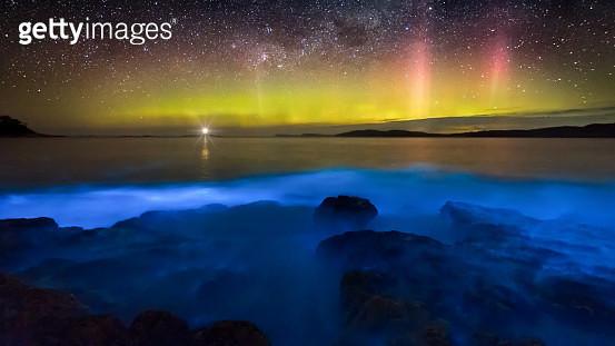 Aurora Australis over blue bioluminescence - gettyimageskorea