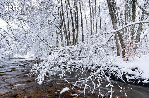 Bayas or Baias River, Gorbeia Natural Park, Alava, Basque Country, Spain, Europe - gettyimageskorea