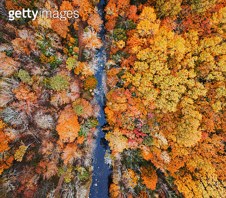 Aerial drone view of Autumn colours in Nova Scotia. - gettyimageskorea