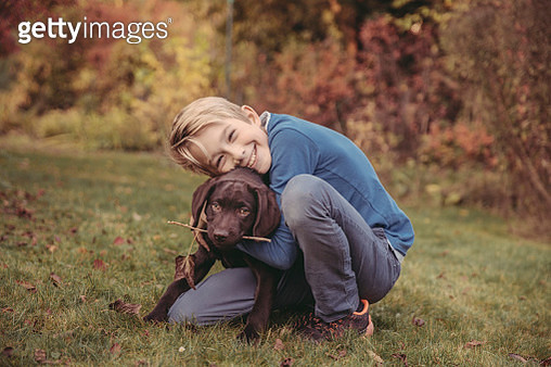 Boy hugging Labrador Retriever in garden - gettyimageskorea