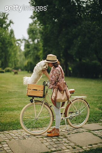 Young women with her dog in a bicycle basket walking in the park - gettyimageskorea