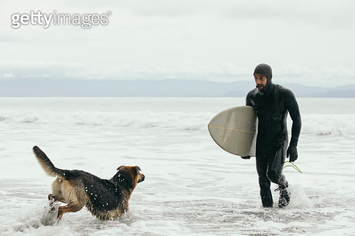 Male surfer with dog carrying surfboard in ocean surf - gettyimageskorea