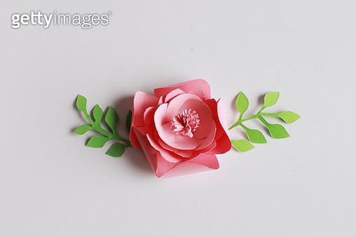Paper flower - gettyimageskorea
