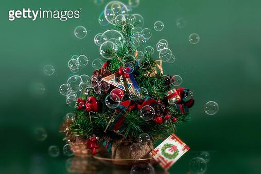 ...Il mio alberello di Natale, ma non avevo le palline... - gettyimageskorea