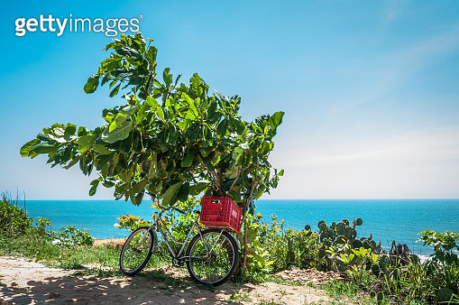 Bicycle on the beach - gettyimageskorea