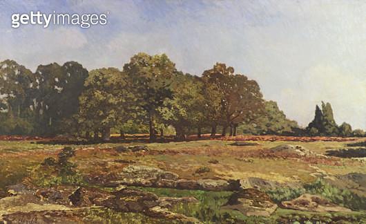<b>Title</b> : Avenue of Chestnut Trees at La Celle-Saint-Cloud, c.1866-67 (oil on canvas)<br><b>Medium</b> : oil on canvas<br><b>Location</b> : Musee de la Ville de Paris, Musee du Petit-Palais, France<br> - gettyimageskorea