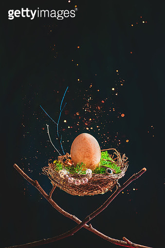Magpie nest with jewelry and an egg, opulence concept - gettyimageskorea