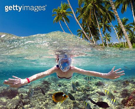 Snorkeling near a tropical island. Beautiful girl swims in the water. - gettyimageskorea