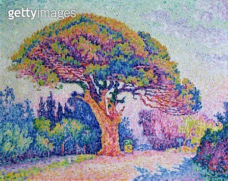 <b>Title</b> : The Pine Tree at St. Tropez, 1909 (oil on canvas)<br><b>Medium</b> : oil on canvas<br><b>Location</b> : Pushkin Museum, Moscow, Russia<br> - gettyimageskorea