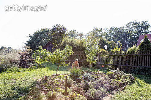Mature woman gardening - gettyimageskorea