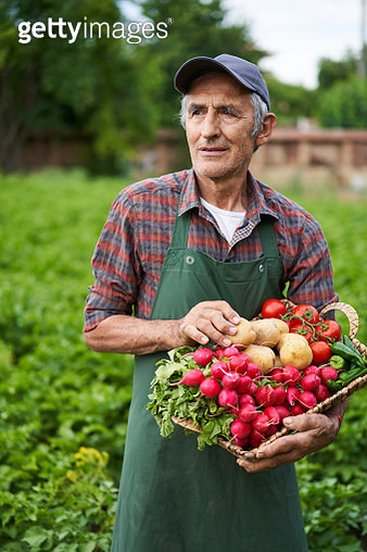 Farmer holding basket with vegetables - gettyimageskorea