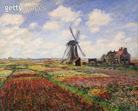 <b>Title</b> : Tulip Fields with the Rijnsburg Windmill, 1886 (oil on canvas)<br><b>Medium</b> : oil on canvas<br><b>Location</b> : Musee d'Orsay, Paris, France<br> - gettyimageskorea