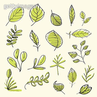Set of hand drawn leaves - gettyimageskorea