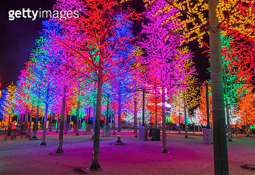 LED Decoration Festival. Concept of energy saving and cool light - gettyimageskorea