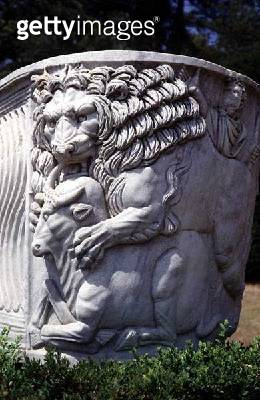 <b>Title</b> : Detail of a lion attacking a bull, from a Neo-Classical sarcophagus on the entrance lawn (stone)<br><b>Medium</b> : stone<br><b>Location</b> : Cliveden House, Buckinghamshire, UK<br> - gettyimageskorea