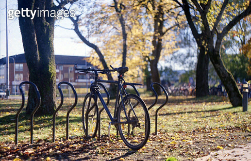 Black bicycle parked in a park - gettyimageskorea