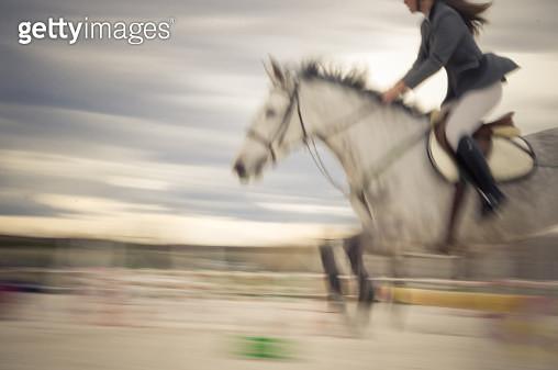 Equestrian show jump - gettyimageskorea