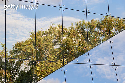Low Angle View Of Trees Reflecting On Modern Glass Building - gettyimageskorea