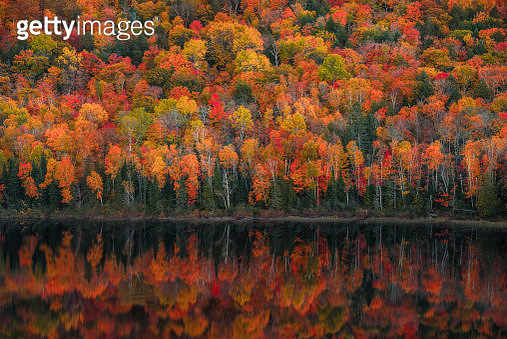 Lake of the Clouds Fall Color Reflections #1 - gettyimageskorea