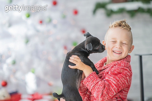 Cute kid with dog - gettyimageskorea