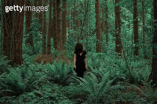 Young Woman Standing Amidst Trees In Forest - gettyimageskorea