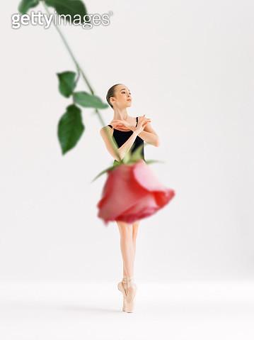 Beauty of ballet - gettyimageskorea