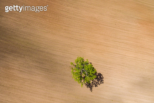 Drone Image. Aerial View Of Rural Area With Fields. Single Isola - gettyimageskorea