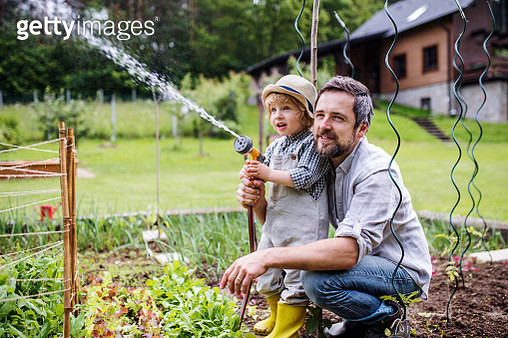 A father and son working in the garden. - gettyimageskorea