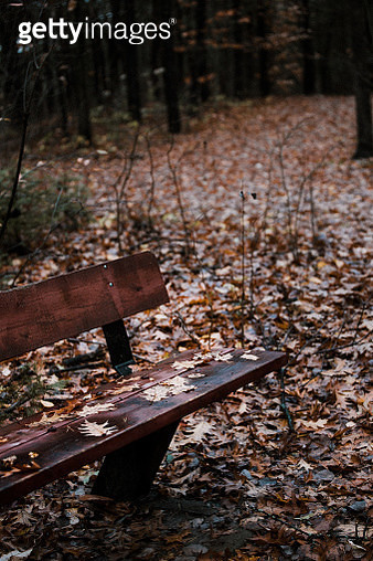 Park bench in autumn close up - gettyimageskorea