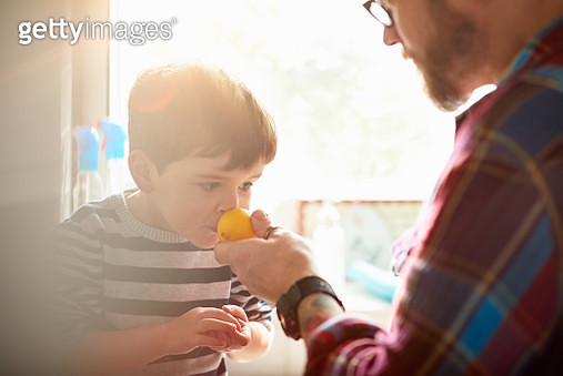 A father holding a lemon up to his son so he can smell it - gettyimageskorea