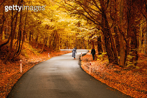 Rear View Of Woman Standing On Road By Man In Forest During Autumn - gettyimageskorea