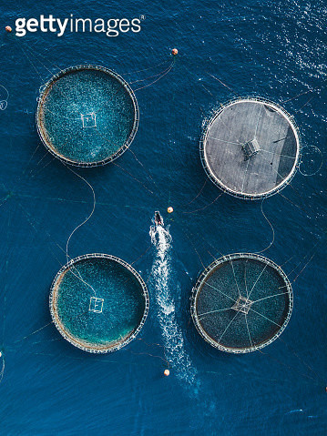 Boat inspecting a fish farm as seen from above, Lanzarote - gettyimageskorea
