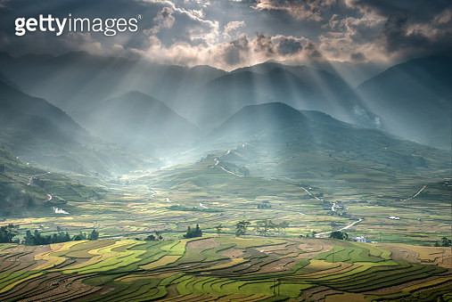 Sunlight over rice terraces. - gettyimageskorea