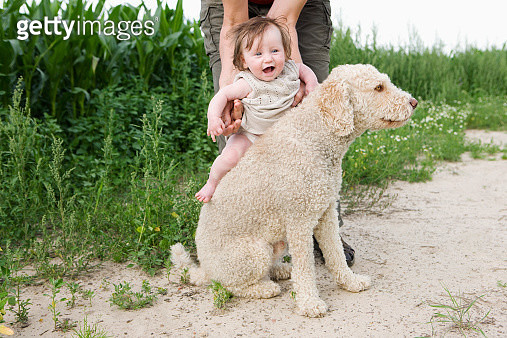 Woman holding baby girl on Portuguese Water Dog's back - gettyimageskorea