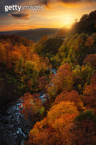 sunset and colorful autumn forest at Tama river, Tamagawa Hot Springs, Hachimentai, Tohoku Region, Japan - gettyimageskorea