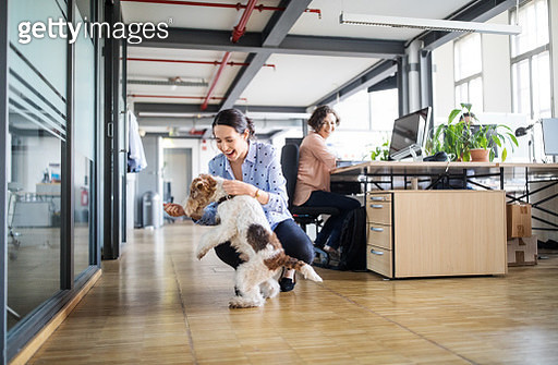 Businesswoman looking at female colleague playing with dog on tiled floor in creative office - gettyimageskorea