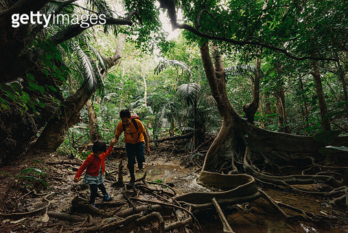 Father and child hiking in jungle of Iriomote, Okinawa, Japan - gettyimageskorea