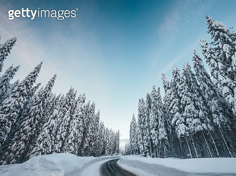 Road Through The Snowcapped Landscape - gettyimageskorea
