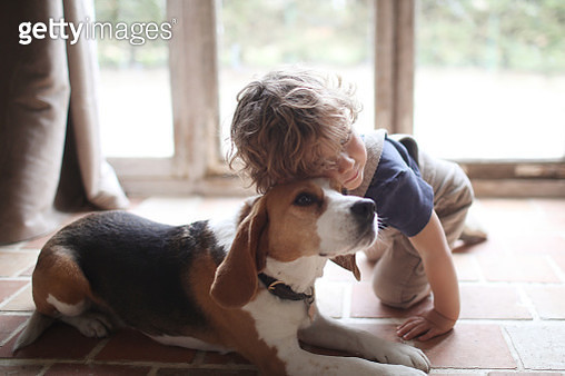 A 3 years old boy and his dog at home - gettyimageskorea