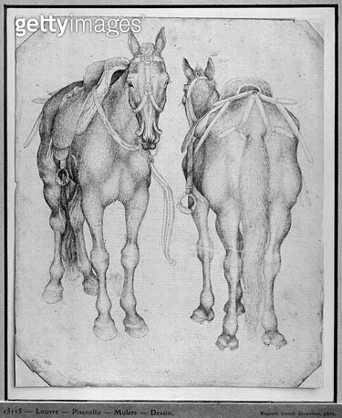 <b>Title</b> : Two horses (pen & ink on paper) (b/w photo)<br><b>Medium</b> : pen and ink on paper<br><b>Location</b> : Louvre, Paris, France<br> - gettyimageskorea