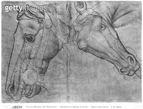<b>Title</b> : Heads of horses (pen & ink on paper) (b/w photo)<br><b>Medium</b> : pen and ink on paper<br><b>Location</b> : Louvre, Paris, France<br> - gettyimageskorea